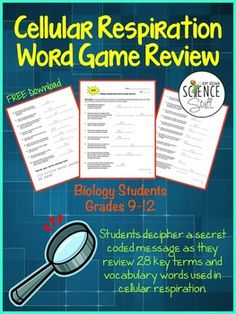 FREE.   Cellular Respiration Word Game Review Activity