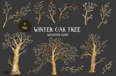 Watercolor Clipart Winter Oak Tree by Corner Croft on @creativemarket