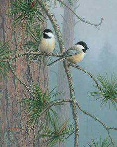 Red Pine and Chickadees painting by Jim Hautman WildWings
