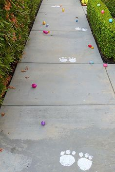 """Leave an Easter Bunny Trail Create """"bunny tracks"""" around where you're hiding the eggs."""