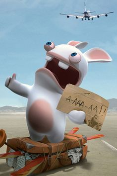 The Rabbids !
