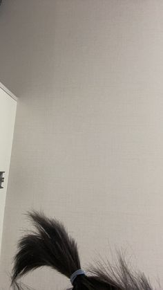 #day6 #jae Park Jae Hyung, Jae Day6, Face Reveal, Shit Happens