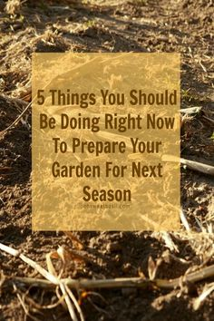 5 things you should be doing to prepare your garden for the next planting season www.ohsweetbasil.com/?utm_content=buffer57859&utm_medium=social&utm_source=pinterest.com&utm_campaign=buffer