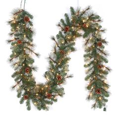 Home Accents Holiday 9 ft. Pre-Lit LED Artificial Alexander Pine Christmas Garland with 165 Tips and 100 Warm White Lights
