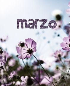 Bienvenido seas mes de #marzo. ¡Que tengáis un gran inicio de semana amig@s! www.casamontanes.com  Marzo