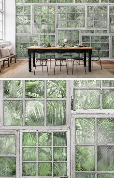 WALL MURAL | WALLPAPER | DISCOVER | CURIOUS | EXPLORE | EXPLORER | BUTTERFLIES | TREASURE HUNT | SECRET PLACES | MYSTERIOUS SPACES | ODD | BEAUTIFUL | PHOTO WALL MURAL | GARDEN | GREENHOUSE