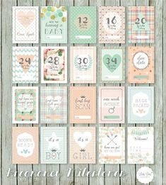 06. Pregnancy Milestone Cards