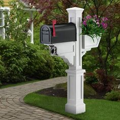 I've planted vines around posts that hold mailboxes for clients before, it always dresses up the mailbox a bit. Maybe even the postman/woman appreciate a ...
