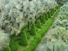 Topiary in Thailand - photo by photigule, via Flickr