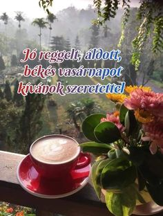 Coffee Quotes, Good Vibes Only, Happy Saturday, Tarot, Life Quotes, Journal, Quotes About Life, Quote Life, Living Quotes
