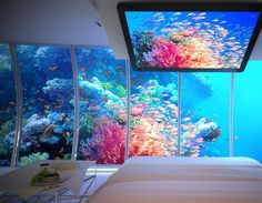 Dubai's underwater hotel. Simply gob-smacked!