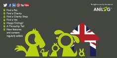 Pet Adoption UK Twitter Header Happy Endings, Guinea Pigs, Header, Charity, Pets, Twitter, Animals And Pets