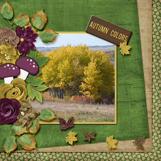 Fall colors is a digital scrapbook layout made with Time Out Scraps - Happy Fall http://withlovestudio.net/shop/index.php?main_page=index&manufacturers_id=100&zenid=e44ee67b687a5c9a8959b9403e9dfa20