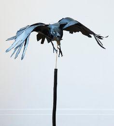 Raven - Anna Wili Highfield