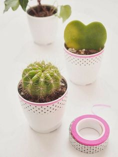 washi tape plant pots - pop some cute little succulents and cacti on your desk for a sweet botanical accent