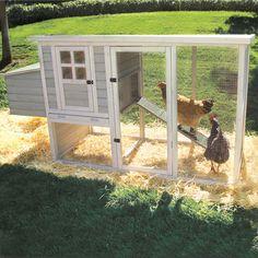 Farmstead Chicken Coop