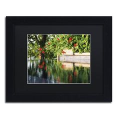 "Trademark Art ""Trumpet Vine by a Pool"" by Kurt Shaffer Framed Photographic Print Size: 1"