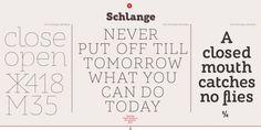 ALS Schlange Sans font download
