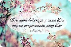 стихи из библии на каждый день print: 22 тыс изображений найдено в Яндекс.Картинках