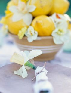 Daffodil delight  Bring the cheer of daffodils to your tabletop with a sunny centerpiece or place setting.
