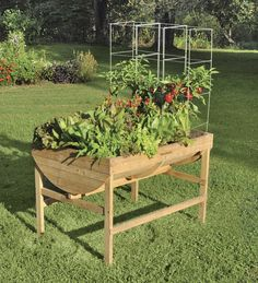 Veg Trugs This Is What I 39 M Using At The Moment The Soil