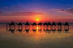 "Fabulous shot!  RT and thanks @JenaC2 via @marcellacarifi ""Cable Beach, Broome, Australia"" #Sunset #Broome"