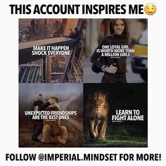 Follow @imperial.mindset BEFORE THEY GO PRIVATE - @imperial.mindset @imperial.mindset
