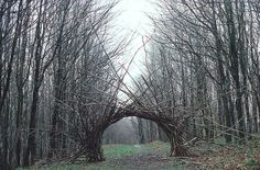 Andy Goldsworthy. Yes, yes. http://www.goldsworthy.cc.gla.ac.uk/images/l/ag_03537.jpg