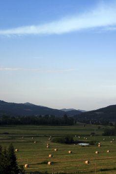 Lisciano Niccone valley. www.marilenalacasella.com