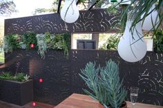 Laser cut screen for privacy - interesting use of succulents to add interest to screen