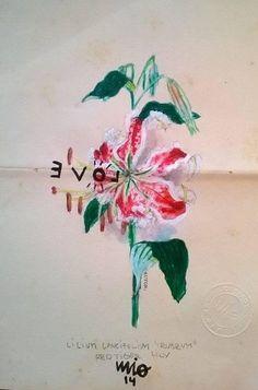 Julio Fierro. Acrylic on paper