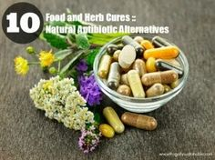 10 Natural Antibiotic Alternatives | Herbs And Oils ... Camomile, mint, lemon all antimicrobial & antibacterial