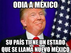 Memes, Donald Trump, Believe, Politics, Humor, American, Followers, Weird, New Mexico