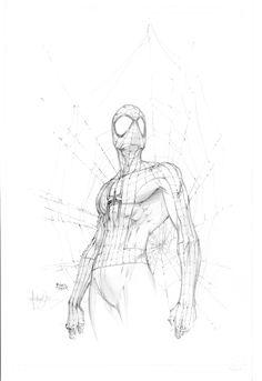 Michael Turner Spider-Man Sketchbook Cover Comic Art