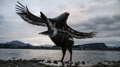 A Kiwi artist has resurrected two extinct native birds using cutlery, hot water cylinders and horse shoes. Abstract Sculpture, Wood Sculpture, Bronze Sculpture, Metal Sculptures, Scrap Metal Art, Found Art, Bald Eagle, Glass Art, Horse Shoes