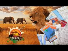 Years of traveling Southern Africa mixed into a minute, some good memories with clients and friends alike. The footage in this video comes from Mozambique, B. Self Driving, Best Memories, 5 Years, Safari, My Life, Southern, Traveling, African, Youtube
