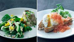 Kyllingeterrin og pocherede æg med stenbiderrogn