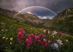 Mountain Sanctuary by candacedyar landscape mountains rainbow trail thunderstorm photography wildflowers wilderness paintbrush columbi Beautiful World, Beautiful Places, Landscape Photography, Nature Photography, Amazing Photography, Travel Photography, Over The Rainbow, Nature Pictures, Amazing Nature