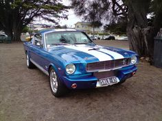 shelby-american-muscle-cars