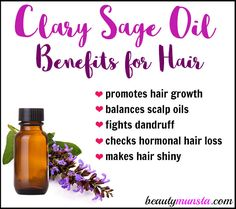 Hi Lovelies! Today's special post is about clary sage oil for hair growth and lovely locks of hair! You'll find out the benefits of clary sage oil for hair and how to make your own hair growth serum with it! What is Clary Sage Oil? Scientific Name: Salvia Coconut Oil Hair Treatment, Coconut Oil Hair Growth, Hair Growth Oil, Oil For Curly Hair, Oil For Hair Loss, Hair Oil, Clary Sage Essential Oil, Essential Oils For Hair, Clary Sage Doterra