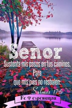 Imágenes con Frases CRISTIANAS de Agradecimiento a Dios   Saberimagenes.com Bible Scriptures, Bible Quotes, Protection Quotes, Quotes About Everything, God Loves You, Gods Promises, Fact Quotes, Quotes About God, Morning Images