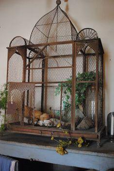 retired Victorian birdcage ♥