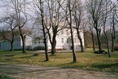 Tjøtta gård, Parkveien 7, 8860 Tjøtta, Norway Delena, Norway, Trunks, Plants, Velvet, Pictures, Drift Wood, Tree Trunks, Plant