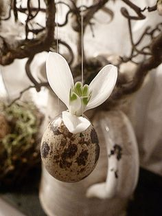 ♥SIMPLE AND BEAUTIFUL-Single flower in egg-shell