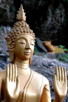 laos buddahs | Buddha #Laos #Luangprabang #Gold #Buddha | Been There, Loved That, T ...