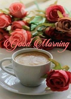 Gd Morning, Good Morning Coffee, Good Morning Flowers, Good Morning Images, Happy Thursday, Happy Sunday, Gud Night Quotes, Beautiful Flowers, Beautiful Pictures
