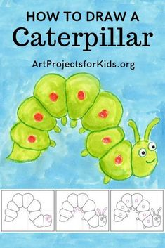 Here's how to draw a caterpillar with a guaranteed squishy look. Start with the spine, add lines for the sections, and then connect.