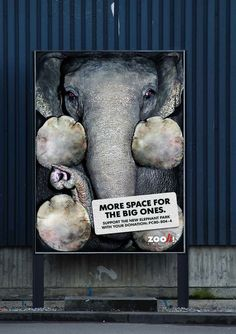 Zoo Zurich: More space for the big ones Support the new Elephant Park with your donation: Creative Advertising, Social Advertising, Print Advertising, Advertising Campaign, Print Ads, Ads Creative, Guerrilla Advertising, Funny Commercials, Funny Ads