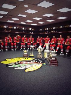 Blackhawks. This is beautiful