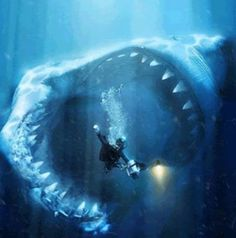 not a good place to be when a megalodon attacks!